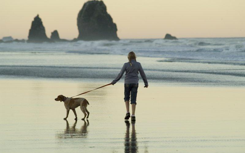 šetanje psa