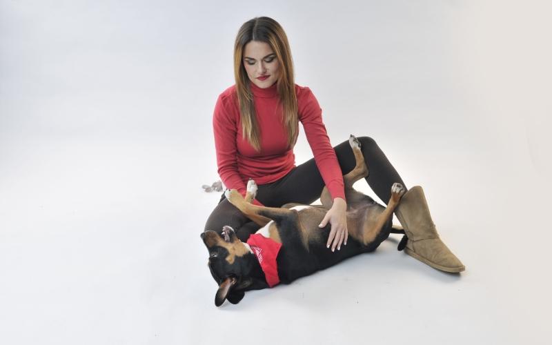 masiranje psa