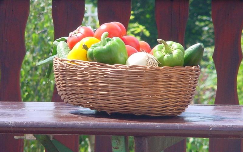 vegetables-1499672