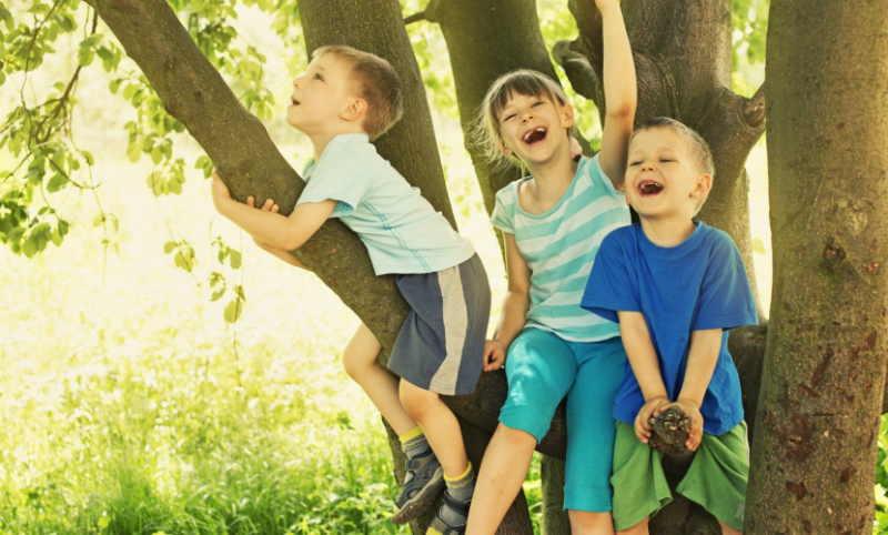 Djeca i boravak u prirodi